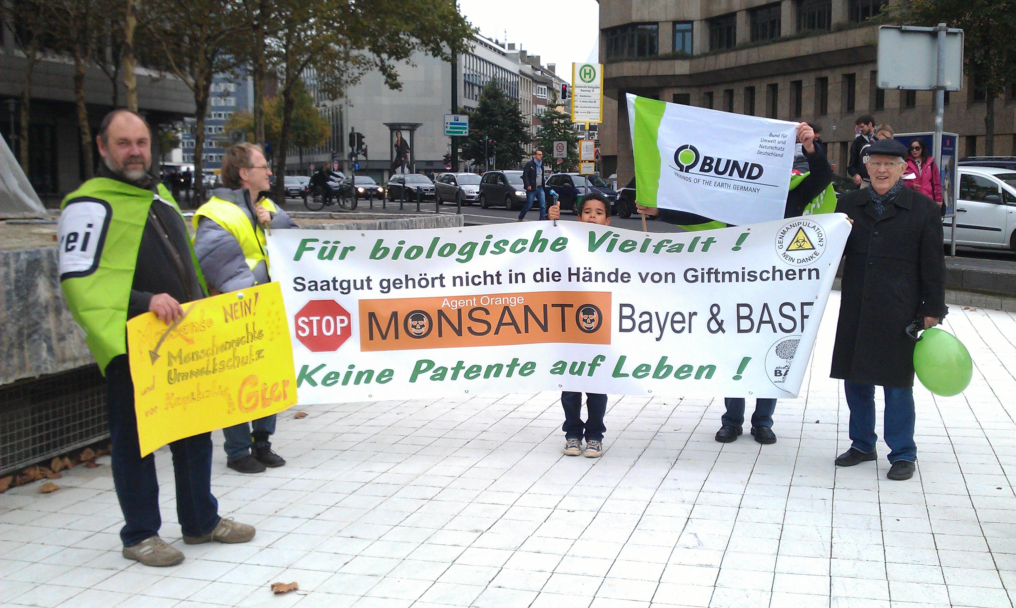 2013 Demo Monsanto (16)