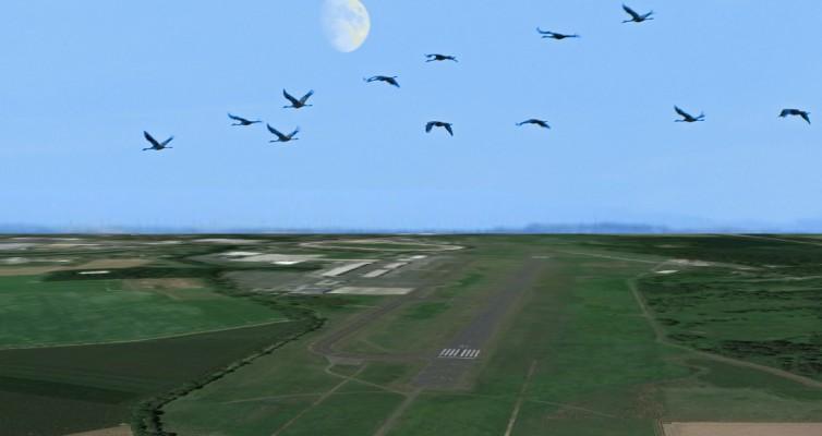 Der Flughafen lebt - Flugbewegungen über dem airport MG