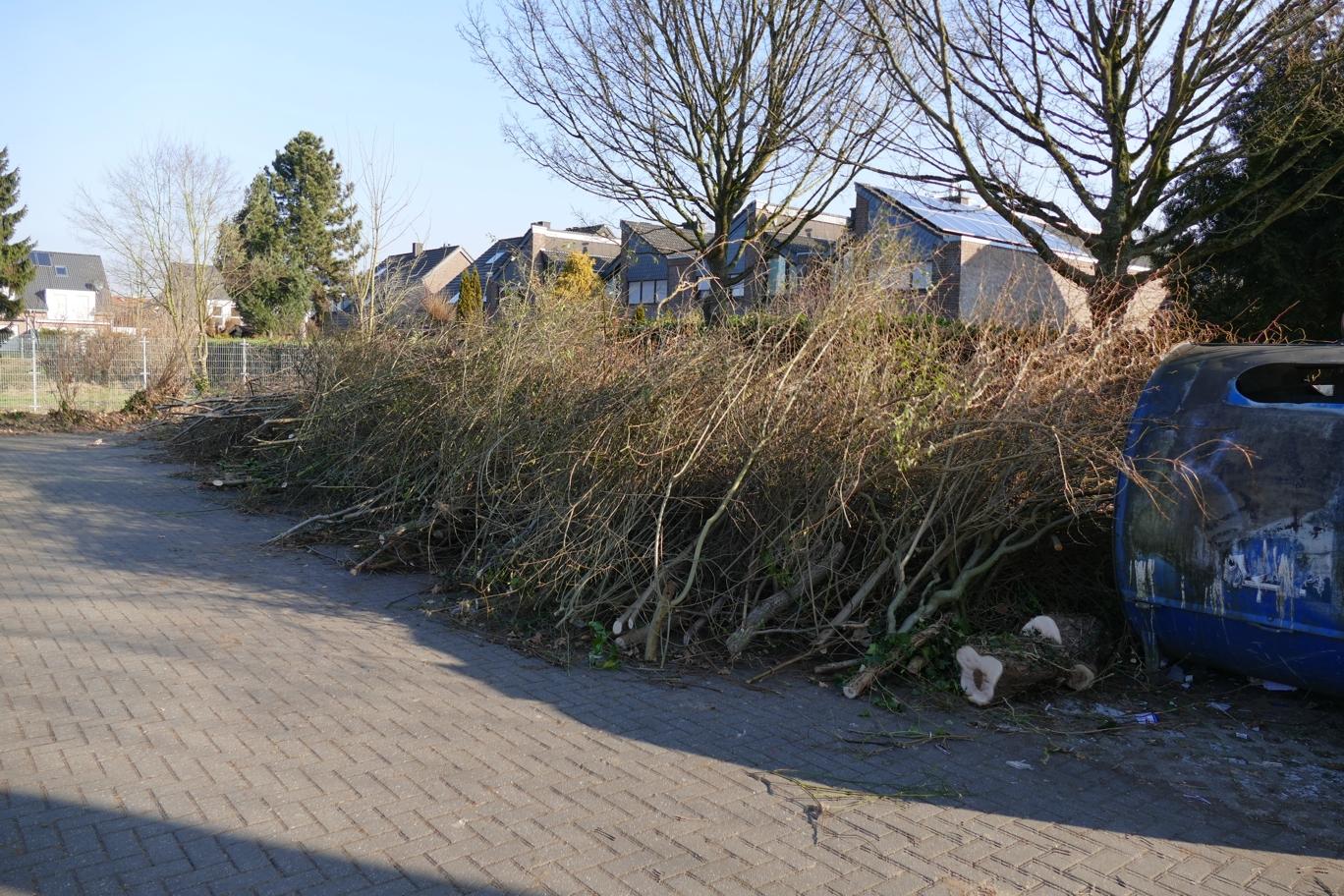 Grünpflege radikal – Bürgerbeschwerden häufen sich