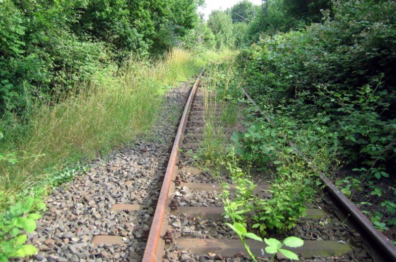 Alte Bahntrassen neu genutzt Schnellradweg und S28 in Neuwerk, besser als BAB-Ausbau